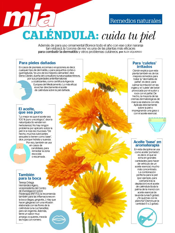 colaboracion-revista-mia-calendula-elena-cibrian